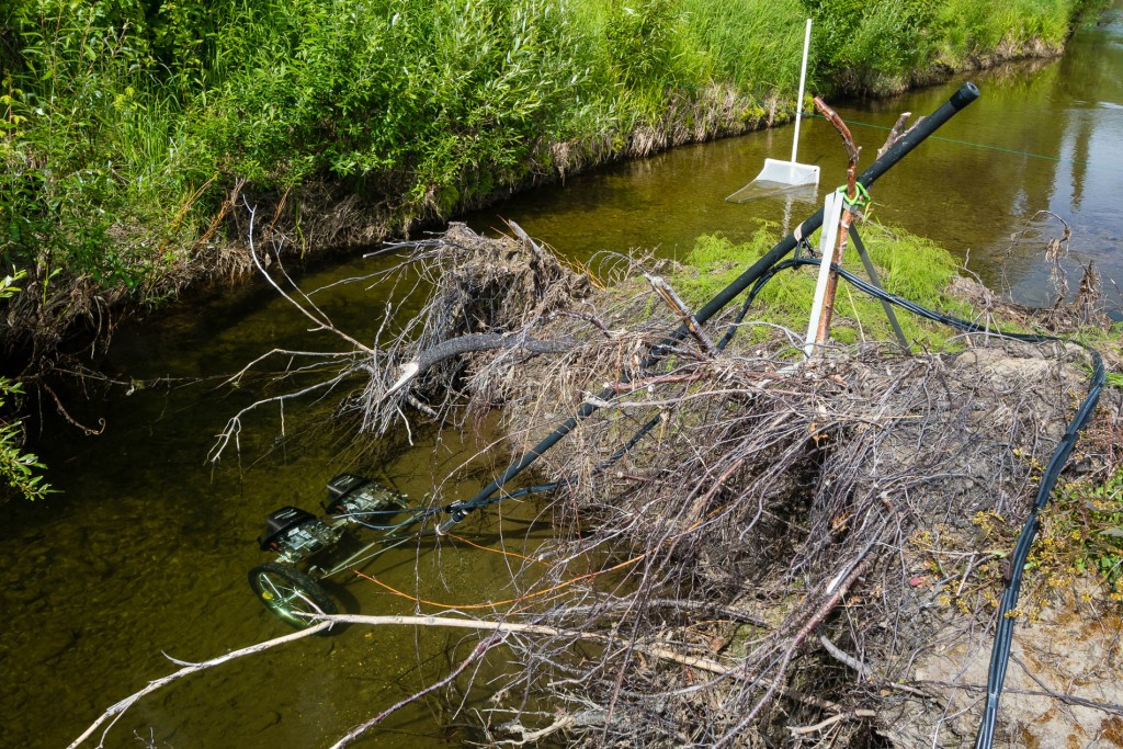 Cameras set up on a school of juvenile Chinook salmon downstream